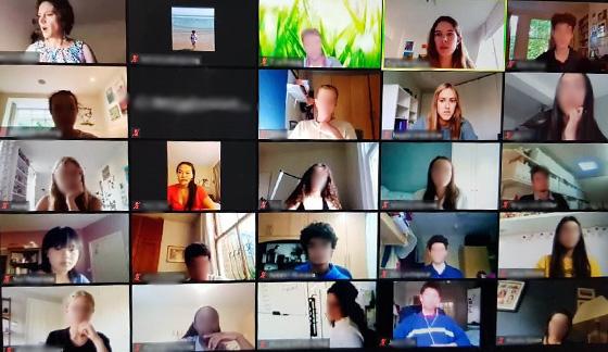 Screenshot of a Zoom meeting, between the school and LSEN.